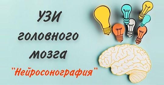 УЗИ головного мозга «Нейросонография»